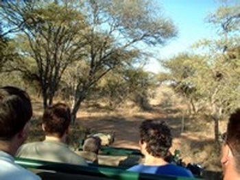 Eco Safaris / Photo Safaris - Ilanga Lodge