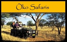 Öko Safaris